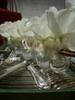 AURORE ET FLORE, Décorationde Table & Florale, Loisirs Créatifs