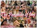 The Paradise Of Feet
