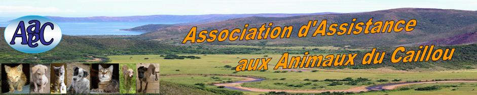 Association d'Assistance aux Animaux du Caillou (AaaC /ex AaaB)