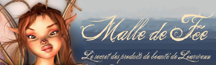 Le blog de malledefee.over-blog.com