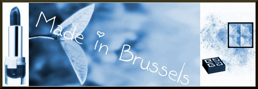 Made In Brussels ... ou ma vie en vrac !
