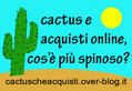 www.cactuscheacquisti.it