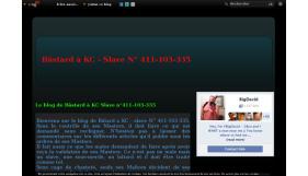 Le blog de Bâstard a KC Slave n°411-103-335